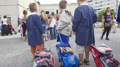 ¿Estás buscando la mejor mochila trolley para la escuela?  Materiales, patrones y modelos más queridos por los niños