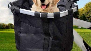 Cesta de bicicletas para perro: Ranking con precios de los modelos más vendidos