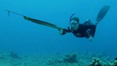 Guía de los mejores fusiles de pesca submarina - Tipos, características y opiniones