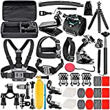 Neewer 50-In-1 Action Camera Accessories Kit Compatible con GoPro Hero 9 8 Max 7 6 5 4 Black...