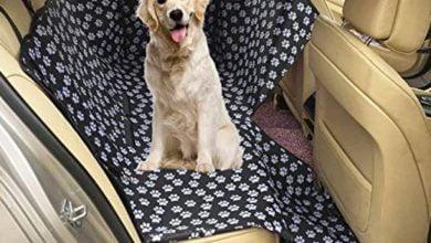 Las mejores fundas para asientos de coche para perros: ¿qué modelo elegir?  Materiales, dimensiones y precios