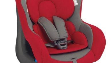 Las mejores sillas de auto Inglesina: ranking top5 con fotos y precios
