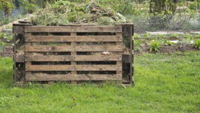 Los 5 mejores compostadores de madera: ¿cuál elegir?  Dimensiones, fotos y precios
