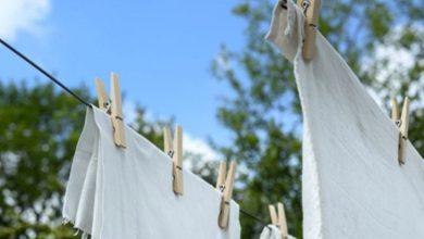 Mejor soporte para pinzas de ropa: ¿Cuál elegir?  Clasificación con reseñas y ofertas