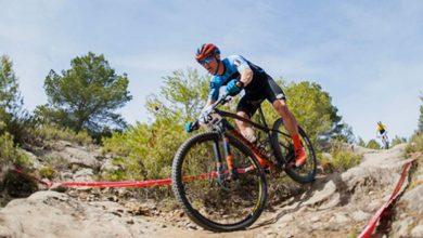 Ranking con precios de las mejores bicicletas de montaña del mercado [Top5]